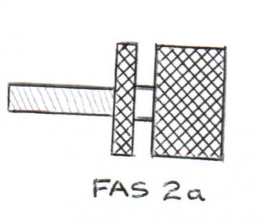 FAS2a